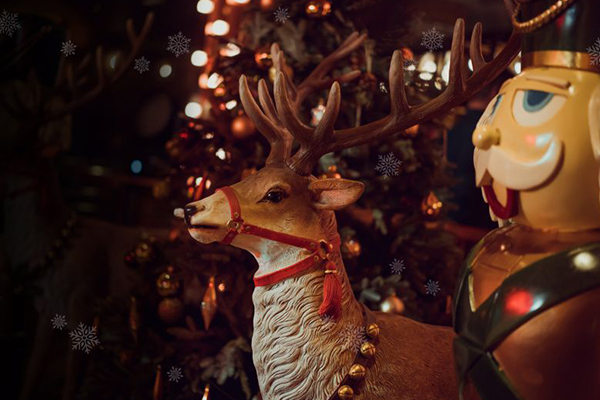 A carving of a Reindeer stands proudly in Brewhemia Edinburgh during Christmas celebrations